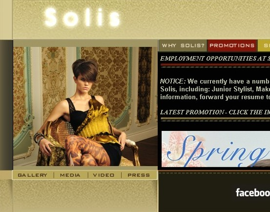 solis_torontos_best_salon_and_spa_downtown_toronto_hairsalon_old_solis_website